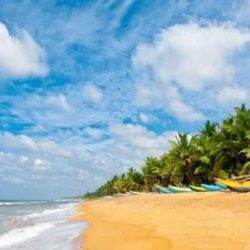 Ahmedabad to Kerala tour package 3 Nights 4 Days by Flight