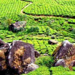 Belgaum to Kerala tour package 2 Nights 3 Days by Flight
