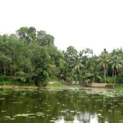 Belgaum to Kerala tour package 3 Nights 4 Days by Flight