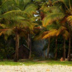 Belgaum to Kerala tour package 8 Nights 9 Days by Train