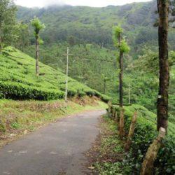 Bhubaneswar to Kerala tour package 3 Nights 4 Days by Flight