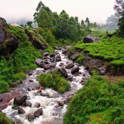 Bhubaneswar to Kerala tour package 5 Nights 6 Days by Flight