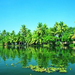 Chennai to Kerala honeymoon package 3 Nights 4 Days by Flight