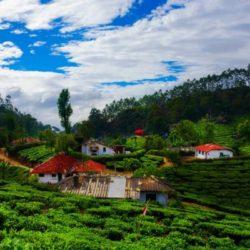 Chennai to Kerala honeymoon package 7 Nights 8 Days by Train