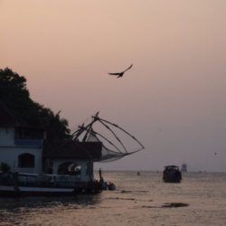 Cochin to Kerala tour package 2 Nights 3 Days by Car