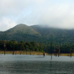 Honeymoon tour packages from Tirupati Kerala