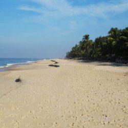 Kolhapur to Kerala tour package 2 Nights 3 Days by Flight