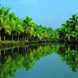 Kottayam to Kerala tour package 3 Nights 4 Days by Car