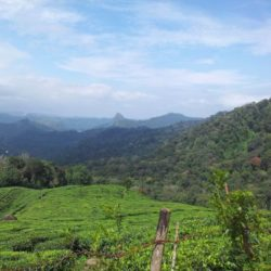 Lucknow to Kerala tour package 3 Nights 4 Days by Flight
