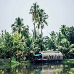 Madurai to Kerala tour package 2 Nights 3 Days by Flight