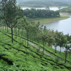 Mangalore to Kerala honeymoon package 9 Nights 10 Days by Train