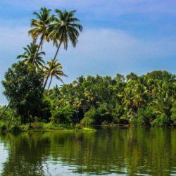 Mysore to Kerala honeymoon package 3 Nights 4 Days by Flight