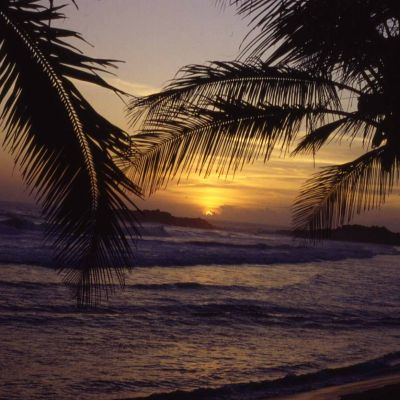 Nagpur to Kerala tour package 3 Nights 4 Days by Flight
