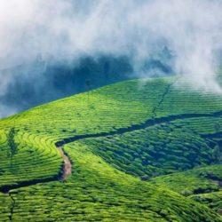 Surat to Kerala honeymoon package 8 Nights 9 Days by Train