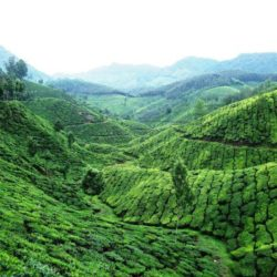 Thrissur to Kerala tour package 5 Nights 6 Days by Car