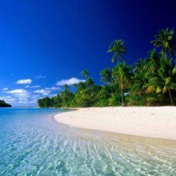 Tiruchirappalli to Kerala tour package 3 Nights 4 Days by Flight