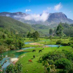 Vadodara to Kerala honeymoon package 7 Nights 8 Days by Train